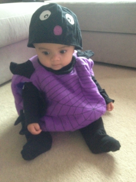 Toddlers Halloween Spider Suit